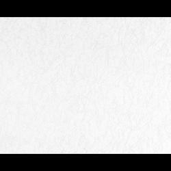 As Creation GO Pro 5m2 - Boyanabilir Duvar Kağıdı Go Pro 2656-16