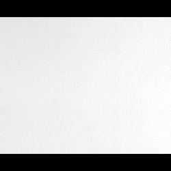 As Creation GO Pro 26,50 m2 - Boyanabilir Duvar Kağıdı Go Pro 5220-16