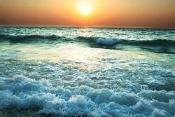 Deniz - duvar posteri deniz 15759616