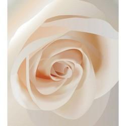 Çiçek - duvar posteri çiçek 10034236