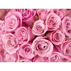 Çiçek - duvar posteri çiçek 1704891