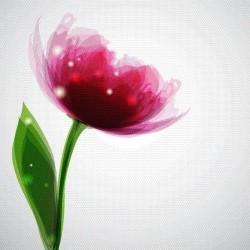 Çiçek - duvar posteri çiçek 77223004