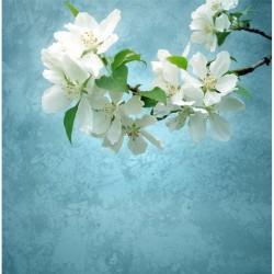 Çiçek - duvar posteri çiçek A103-018
