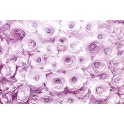 Çiçek - duvar posteri çiçek G 6299