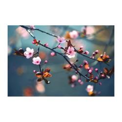 Çiçek - duvar posteri çiçek N688