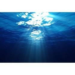 Deniz Altı - duvar posteri denizaltı 2465503