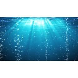 Deniz Altı - duvar posteri denizaltı 53033461