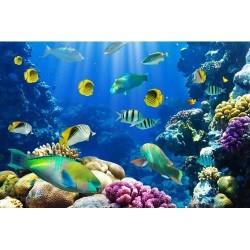 Deniz Altı - duvar posteri denizaltı 72261667