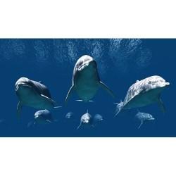 Deniz Altı - duvar posteri denizaltı 78219802
