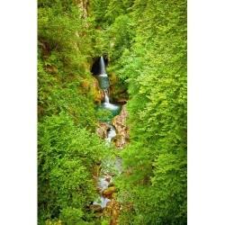 Doğa - duvar posteri doğa 72730981