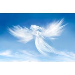 Gökyüzü - duvar posteri gökyüzü A106-019