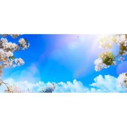 Gökyüzü - duvar posteri gökyüzü A106-030