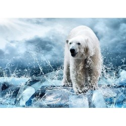 Hayvanlar - duvar posteri hayvanlar 59527417
