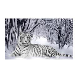 Hayvanlar - duvar posteri hayvanlar n622