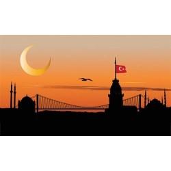 İstanbul - duvar posteri istanbul 71444779