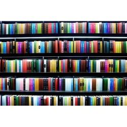 Kitaplık - duvar posteri kitaplık 111003482