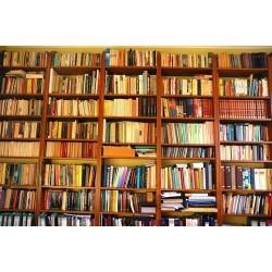 Kitaplık - duvar posteri kitaplık 1633258