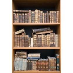 Kitaplık - duvar posteri kitaplık 27620941