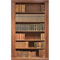 Kitaplık - duvar posteri kitaplık 30323731