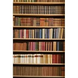 Kitaplık - duvar posteri kitaplık 546012