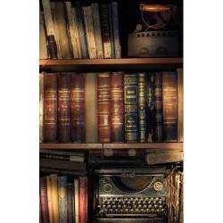 Kitaplık - duvar posteri kitaplık 8554516