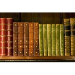 Kitaplık - duvar posteri kitaplık 9063976