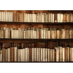 Kitaplık - duvar posteri kitaplık 92050808