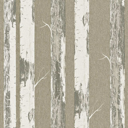 Rasch Modern Surfaces 5 m2 - İthal Duvar Kağıdı Home Style Modern Surfaces 574500