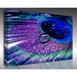 Kanvas Tablo Fotoğraf - Kanvas Tablo 00477