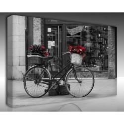 Kanvas Tablo Fotoğraf - Kanvas Tablo 00495