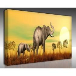 Kanvas Tablo Hayvanlar - Kanvas Tablo 00572