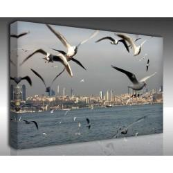 Kanvas Tablo İstanbul - Kanvas Tablo 00592