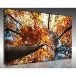 Kanvas Tablo Manzara - Kanvas Tablo 00858