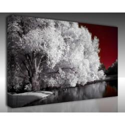 Kanvas Tablo Manzara - Kanvas Tablo 00868