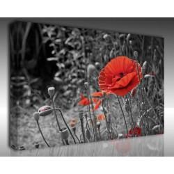 Kanvas Tablo Çiçek - Kanvas Tablo 00225