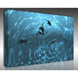 Kanvas Tablo Akvaryum - Kanvas Tablo Akvaryum 21