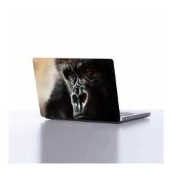 Laptop Sticker - Laptop Sticker DLP068