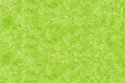 D-C-Fix Designfolie - Yapışkanlı Folyo D-C-Fix 346-0342 Unistruk Grün